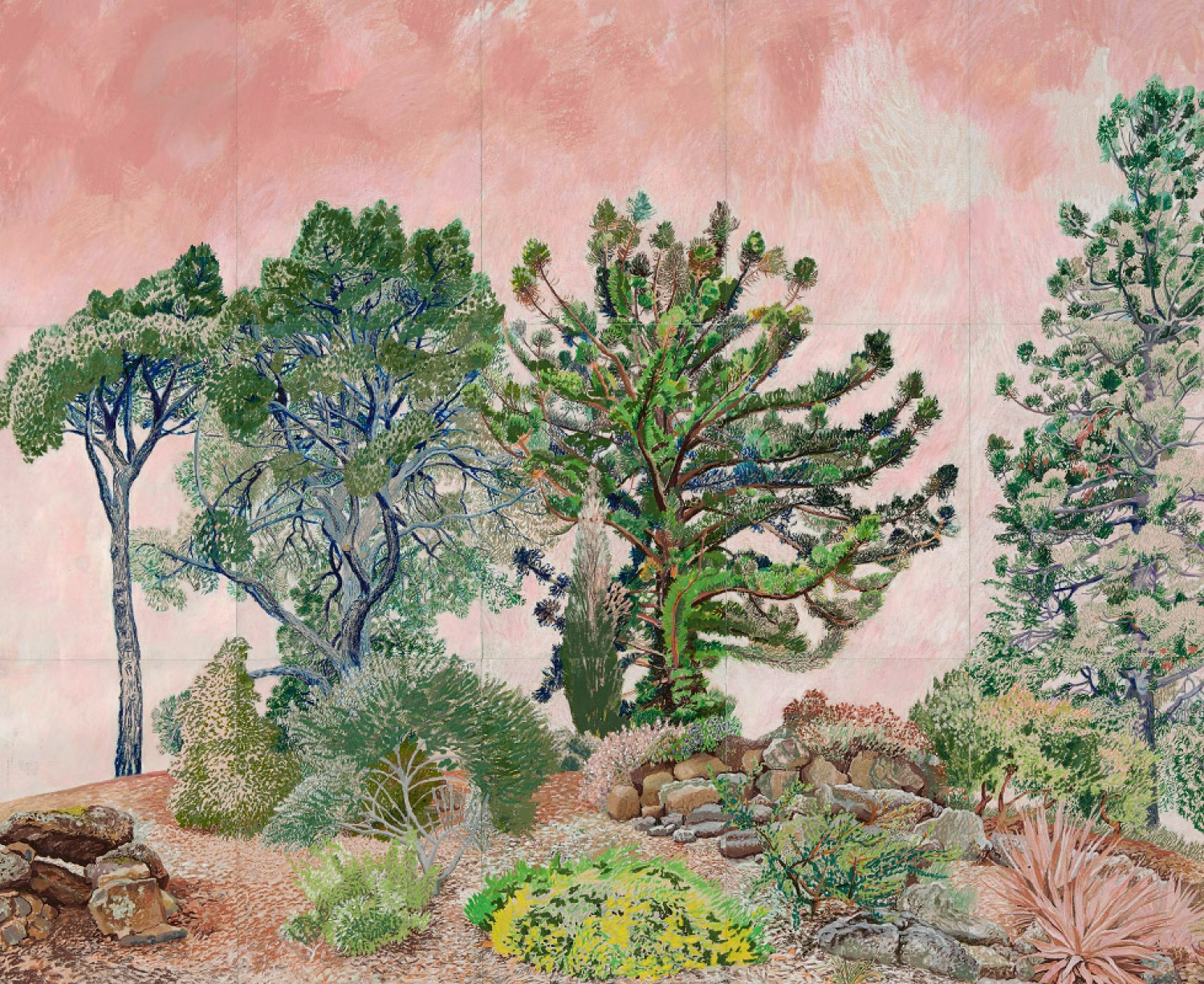Californian Garden 2015 by Elizabeth Nelson