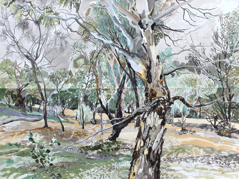 In the Gully (shown in the 2016 Paddington Art Prize) 2016 by Elizabeth Nelson