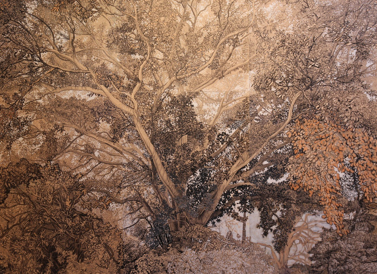 The Fig Tree (shown in the 2014 Swan Hill Print and Drawing Acquisitive Award) 2014 by Elizabeth Nelson